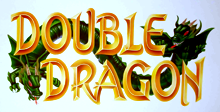 Double Dragon Free Download