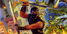 Ninja Gaiden Free Download