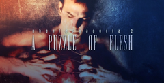 Phantasmagoria 2: A Puzzle of Fles