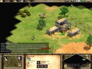 Age of Empires 2: The Age of Kings 13