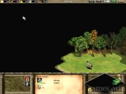 Age of Empires 2: The Age of Kings 11