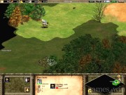 Age of Empires 2: The Age of Kings 9