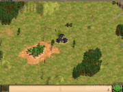 Age of Empires II: The Age of Kings 14