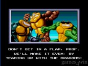 Battletoads and Double Dragon 1