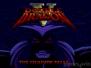 Double Dragon V: The Shadow Falls 1