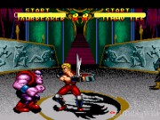 Double Dragon V: The Shadow Falls 13