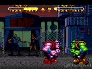 Double Dragon V: The Shadow Falls 2