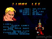 Double Dragon V: The Shadow Falls 15