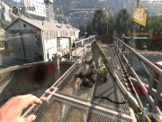 Dying Light: The Following 20