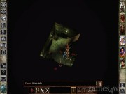 Icewind Dale 10