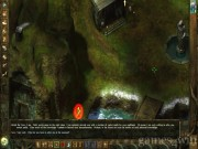 Icewind Dale: Heart of Winter 10