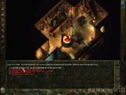 Icewind Dale: Heart of Winter 9