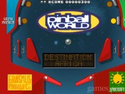 Pinball World 1