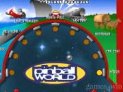 Pinball World 14