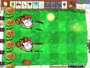 Plants vs. Zombies 14