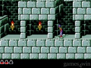 Prince of Persia 29