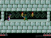 Prince of Persia 28