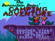 The Berenstain Bears Camping Adventure 1