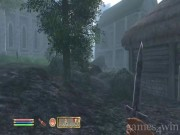 The Elder Scrolls 4: Oblivion 3