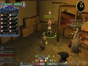 The Lord of the Rings Online: Shadows of Angmar 9