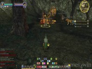 The Lord of the Rings Online: Shadows of Angmar 5