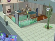 The Sims 2 13