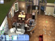 The Sims 3 16