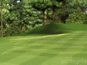 Tiger Woods PGA Tour 2000 14