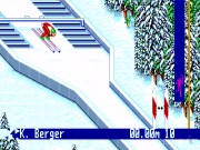 Winter Olympic Games 12