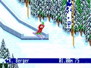 Winter Olympic Games 11