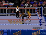 WWF Royal Rumble 1