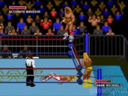 WWF Super Wrestlemania 3