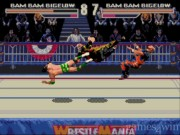 WWF Wrestlemania Arcade Game 2